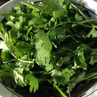 Patrunjelul, una dintre cele mai benefice plante aromatice