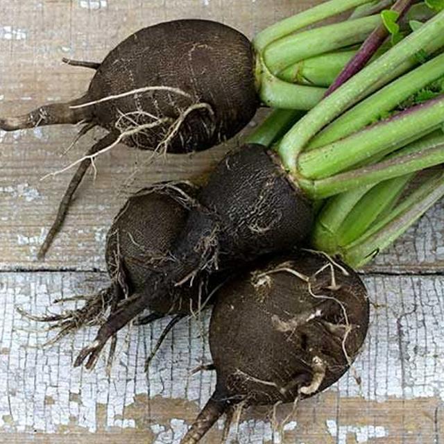 Ridichea neagra, leguma-miracol ce trateaza cele mai variate afectiuni