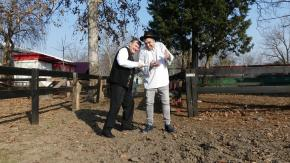Nicolae Datcu si Iulian Niculae - Jull