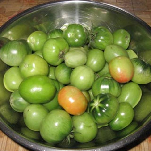 Salata de gogonele